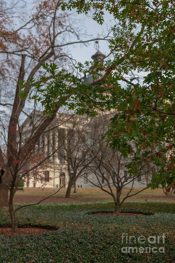 Capitol Grounds Photograph