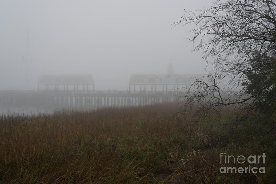Charleston Fog - Lowcountry Morning Photograph