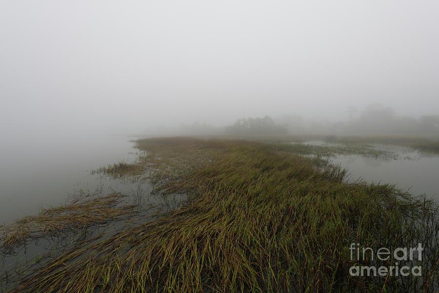 Charleston Fog - Wando River Photograph