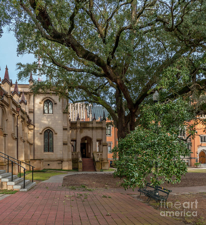 Church Stoll - Trinity Episcopal Cathedral Photograph