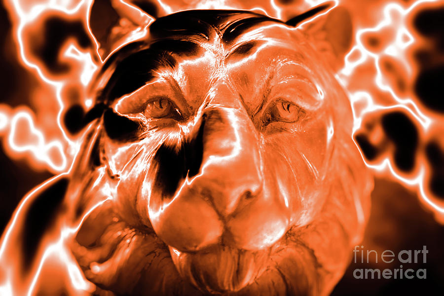 Clemson Tiger Strong Photograph