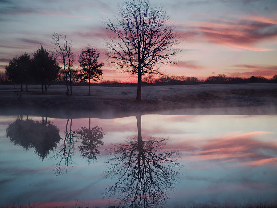 Cold And Glassy Pond Photograph