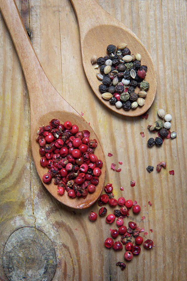 Collection Of Aromatic Herbal Spices Photograph