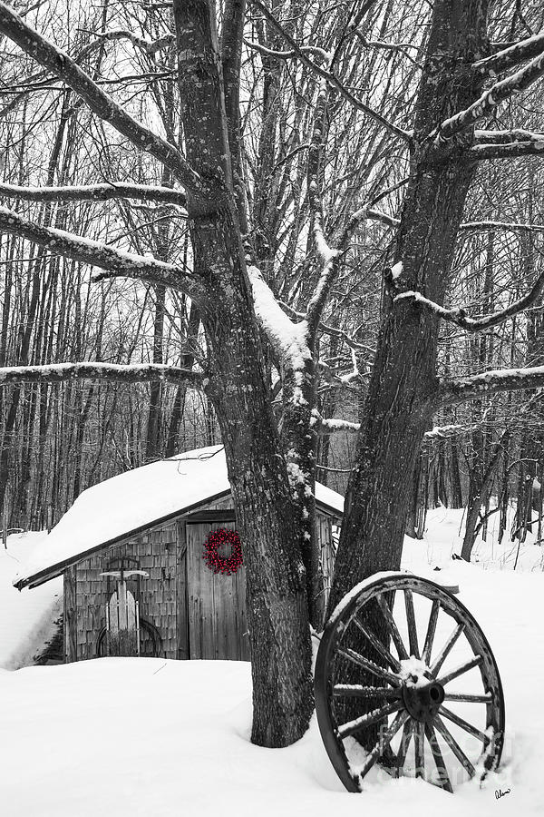 County Winter Photograph