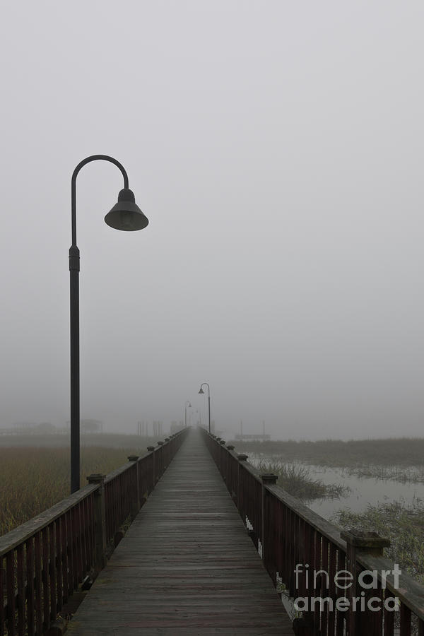 Dockside Southern Fog Photograph