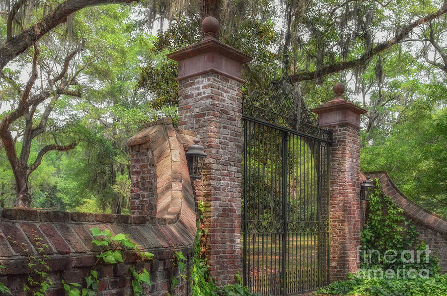 Fenwick Hall Plantation Gates - Johns Island South Carolina Photograph