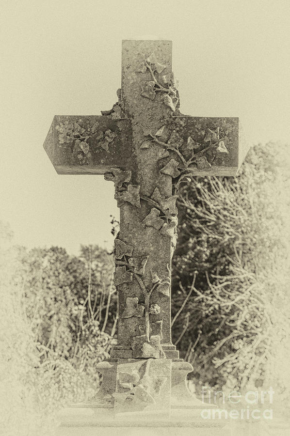 Focus On The Cross - Magnolia Cemetery Photograph