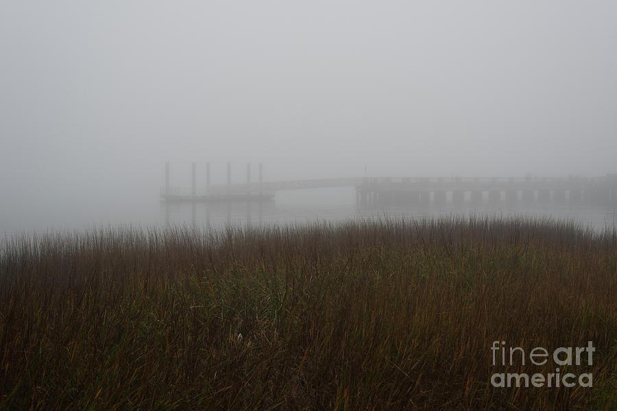 Fog - December 31 2018 Photograph