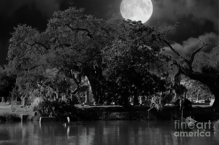 Full Moon Over Magnolia Cemetery Photograph