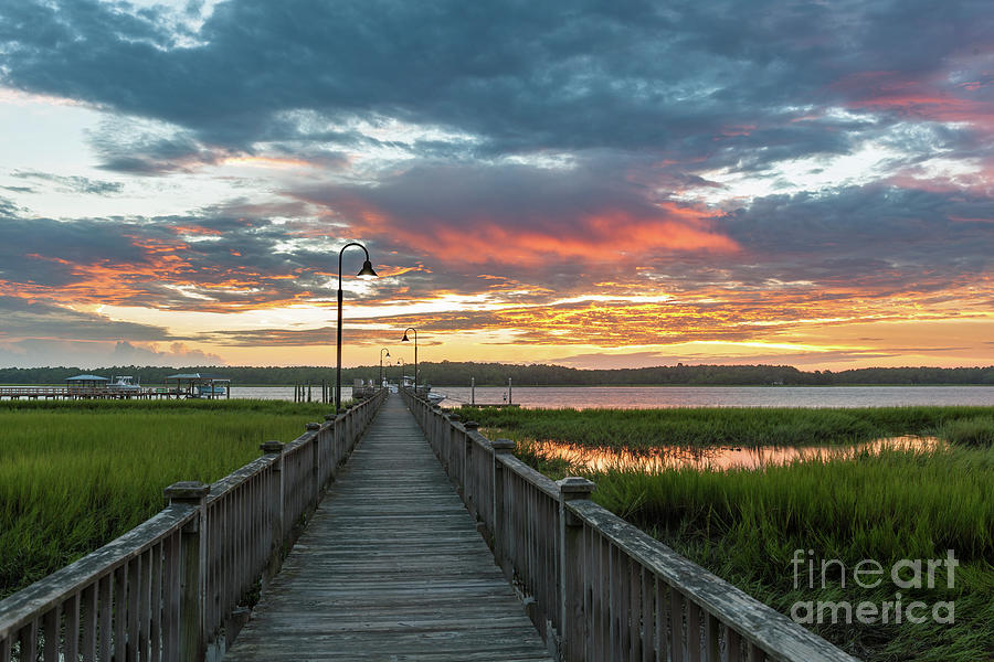 Golden Hues Of Orange - Wando River Photograph