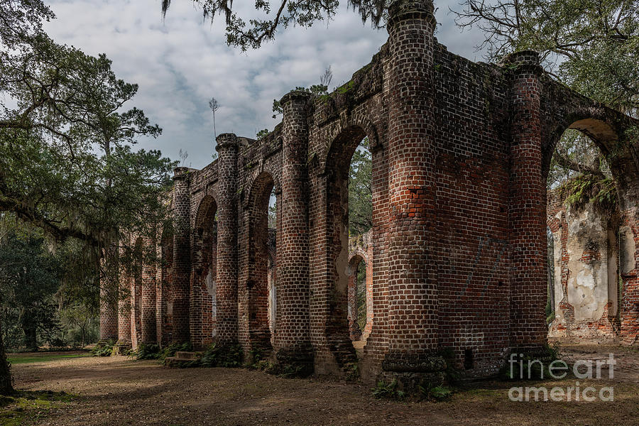 Greek Revival Architecture - Old Sheldon Church Ruins Photograph
