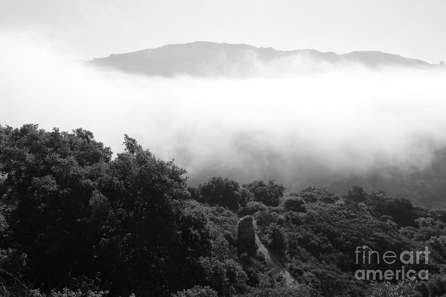 Grey Fog Photograph