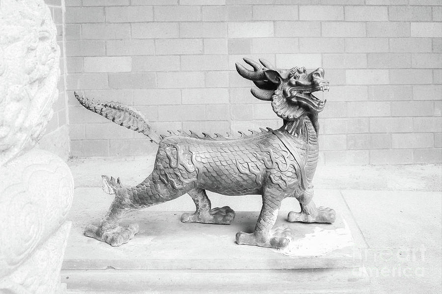 Guard Infrared Photograph