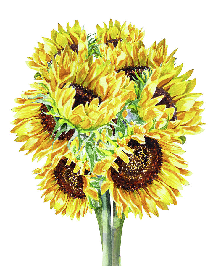 Happy Sunny Bunch Of Watercolor Sunflowers Painting