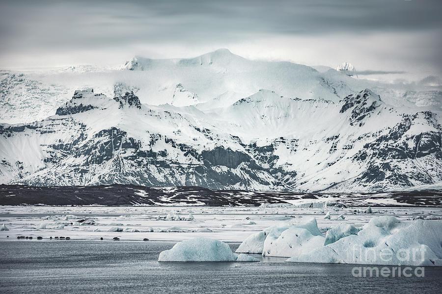Ice Encounters Photograph