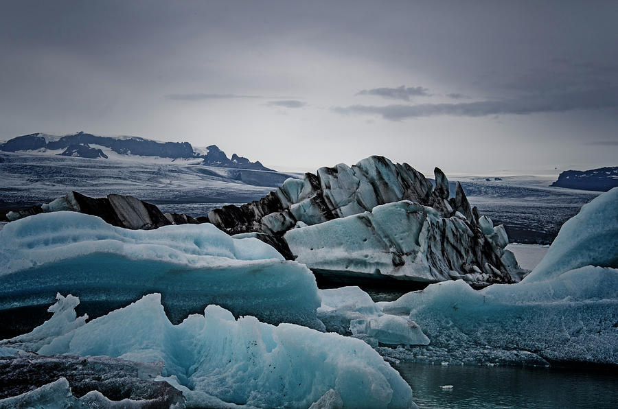 Icy Stegosaurus Photograph