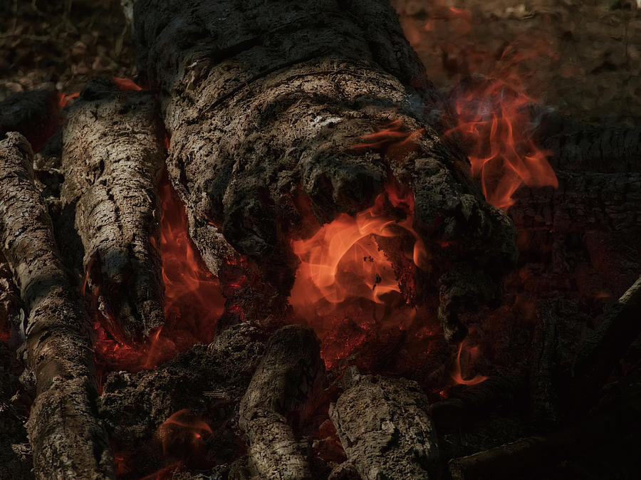 Keeping Warm With Fire Photograph
