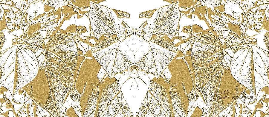 Leaf Path Photograph