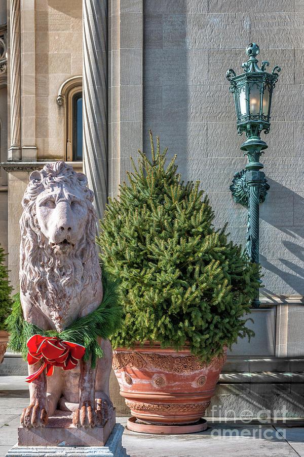 Lion Statue - Biltmore Estate Photograph