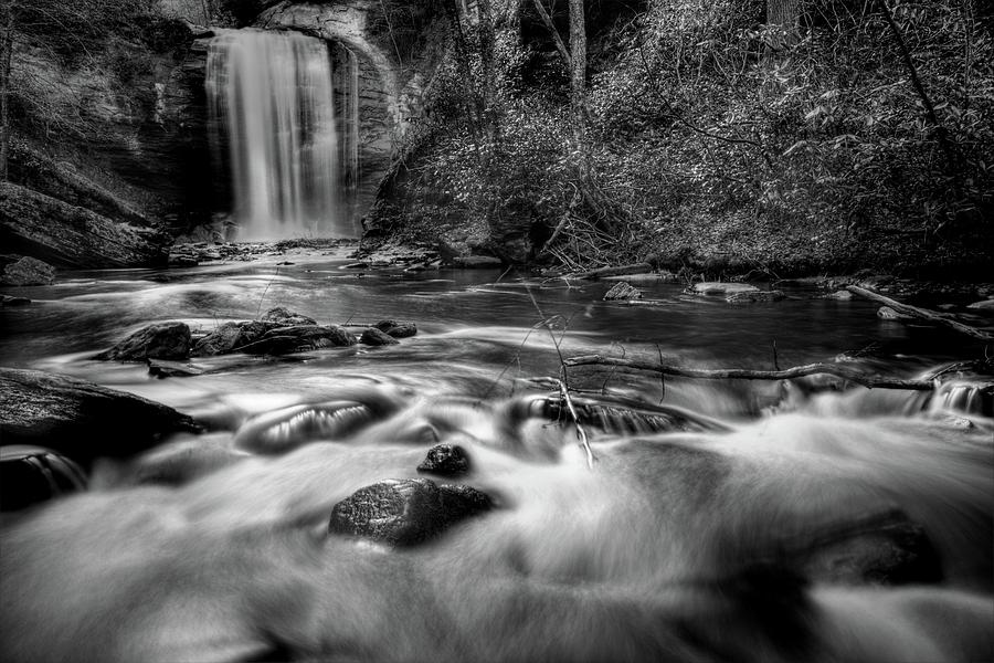 Looking Glass Falls In Black And White Photograph