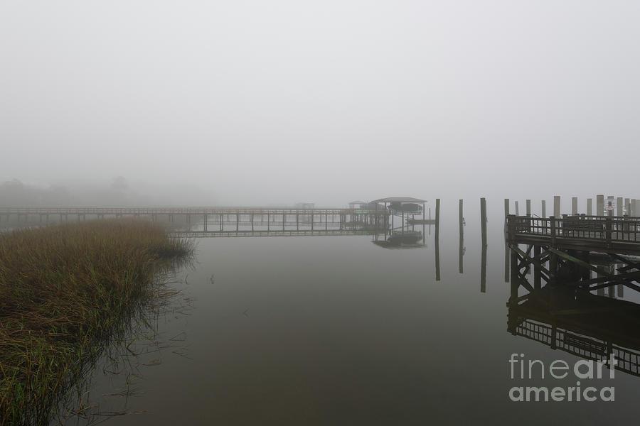 Lowcountry Island Fog Photograph