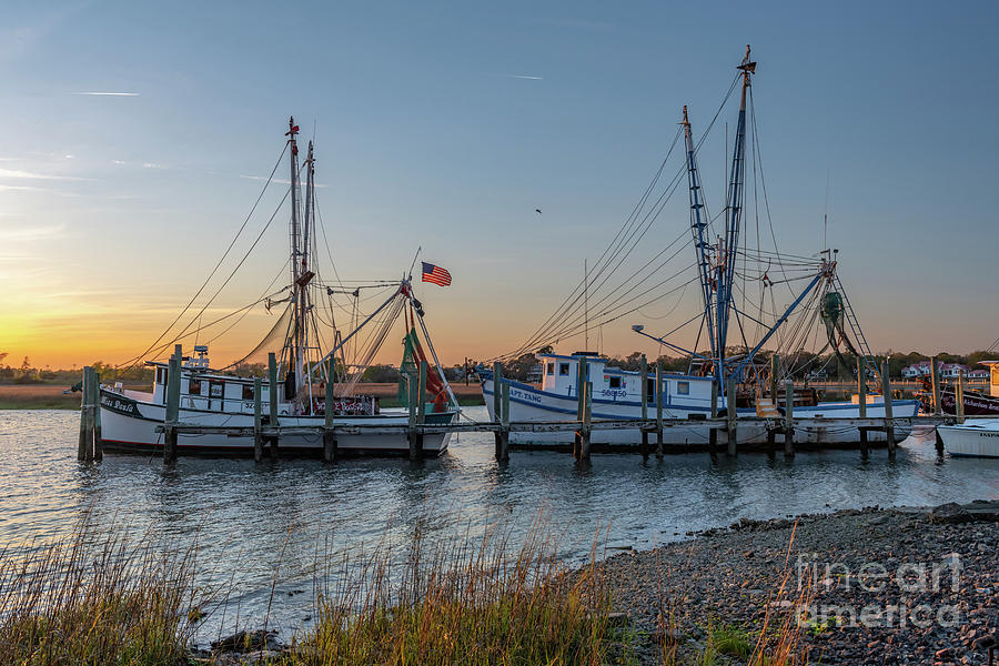 Lowcountry Shrimping Life Photograph