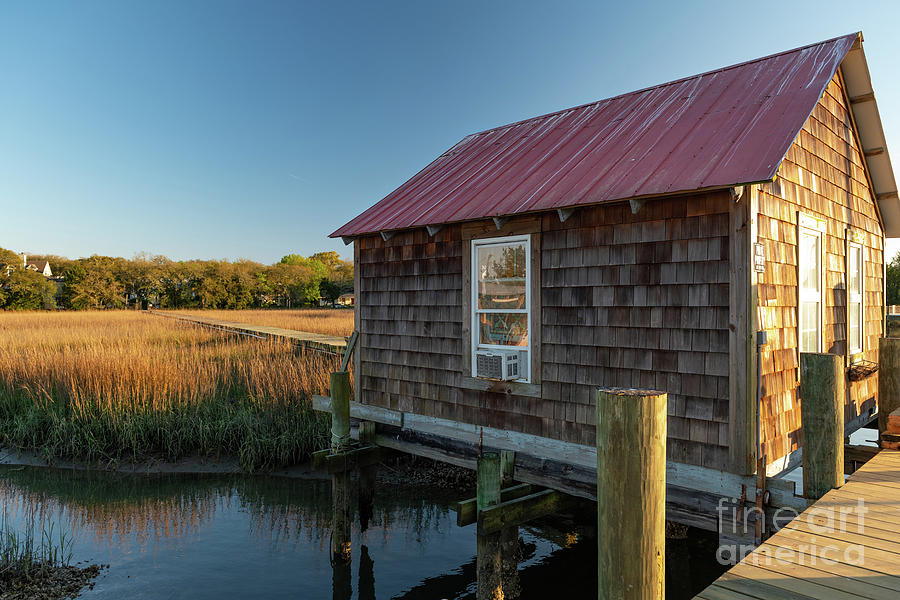 Marsh Dreaming - Shem Creek Photograph