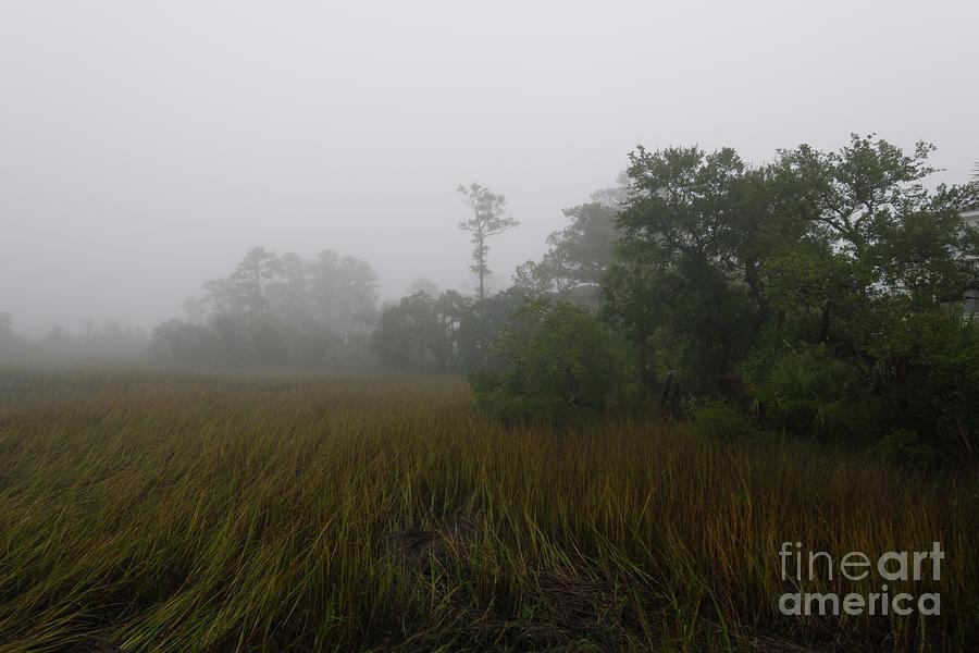 Marsh Fog Gospel Photograph