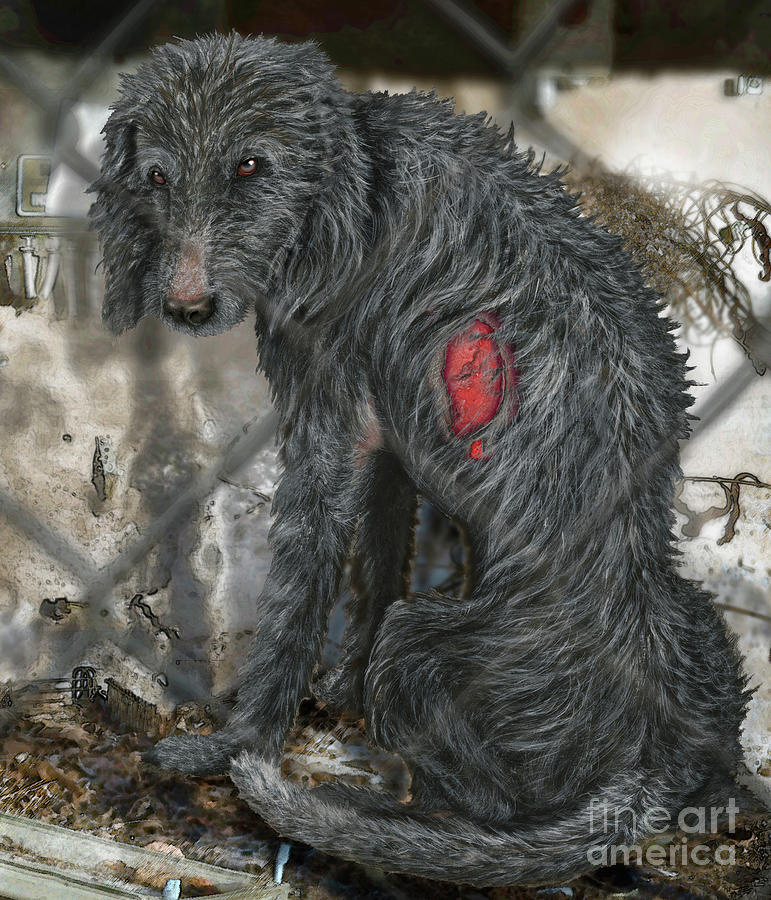 Neglected Dogs - Abused Animals - Misshandelter Hund - Verwahrloster Hund - Fineart - Stock Image Painting