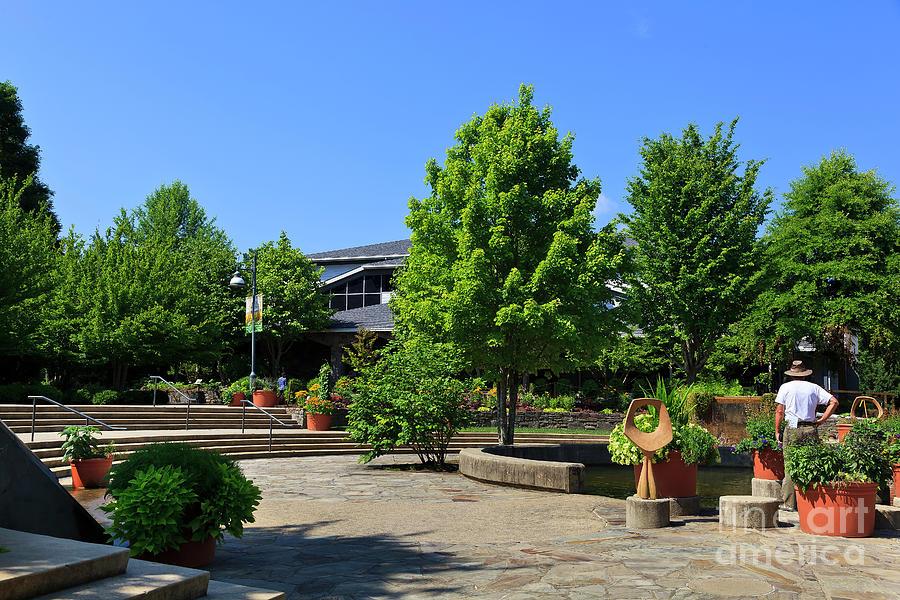 North Carolina Arboretum In Asheville Photograph