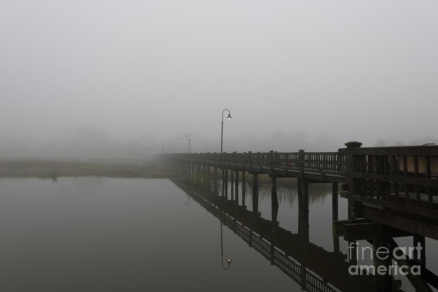 November Foggy Stillness Photograph