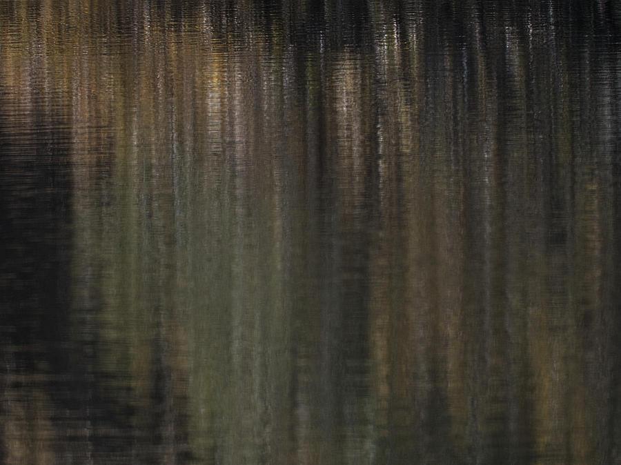 November Reflections Photograph