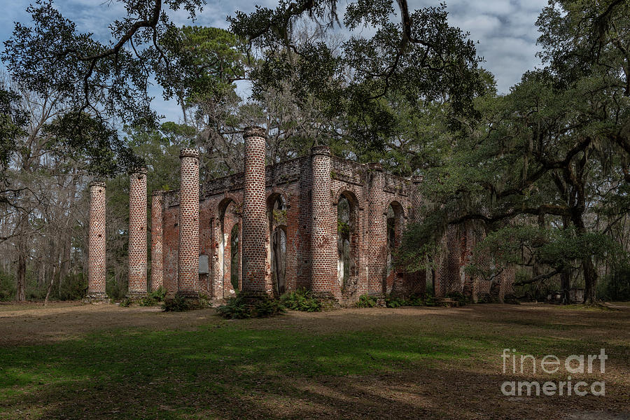 Old Sheldon Church Ruins - Live Oaks Photograph