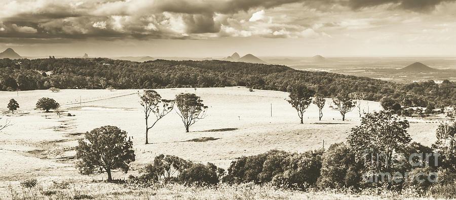 Pastoral Plains Photograph