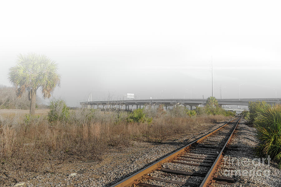 Rails Of Fog Photograph