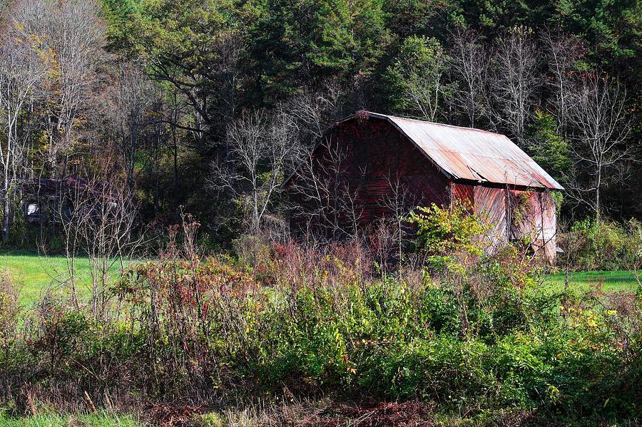 Red Barn Among The Brambles Photograph