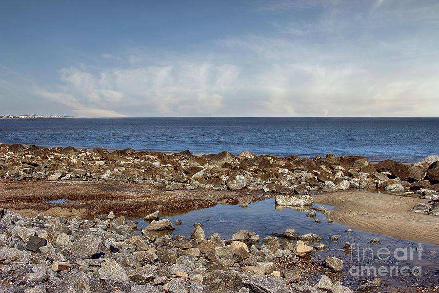 Rocks On Driftwood Beach Photograph