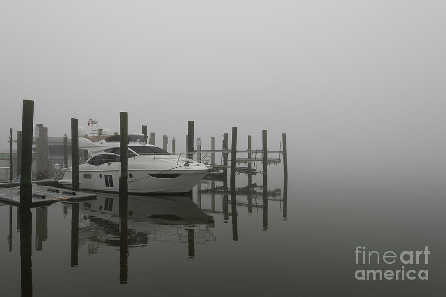 Salty Southern Fog Photograph