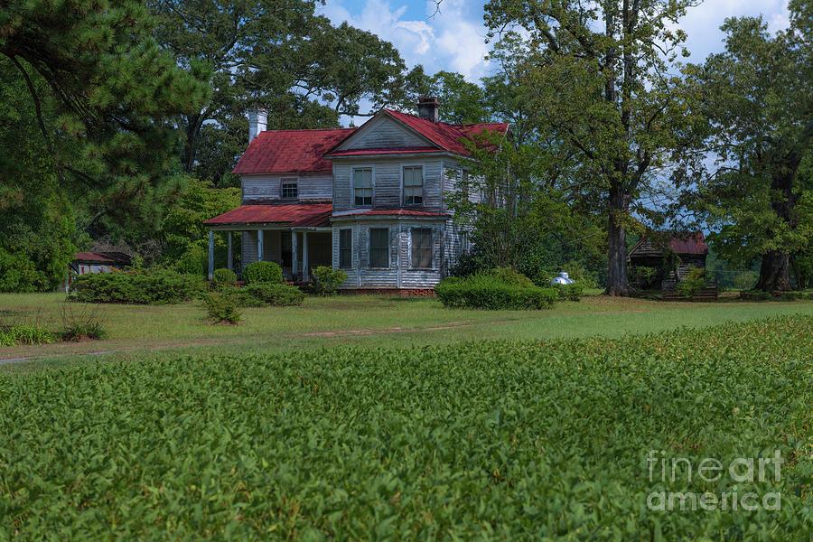 South Carolina Country Living Photograph