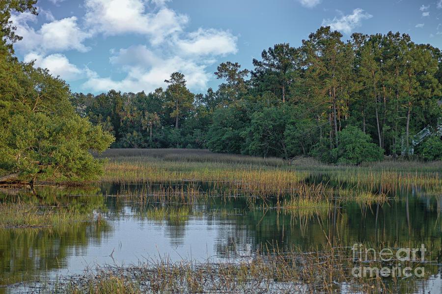 Southern Marsh View - Mount Pleasant South Carolina Photograph