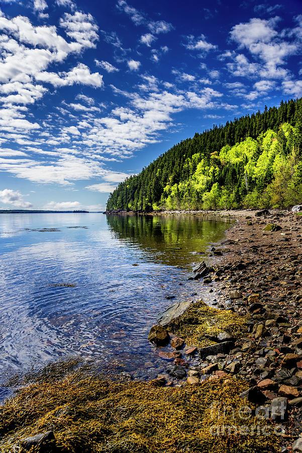 St Croix River Shoreline II Photograph