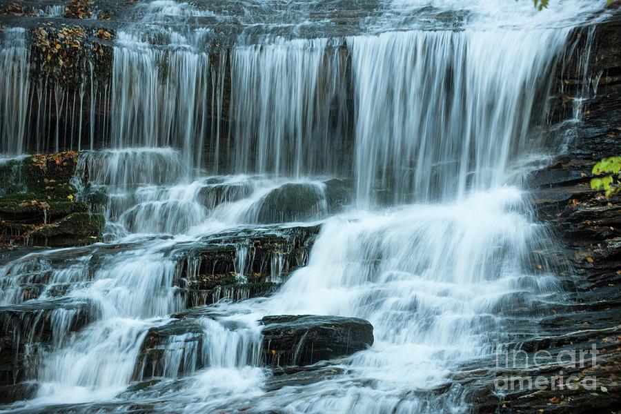 Streaming Water Sounds Of North Carolina Photograph