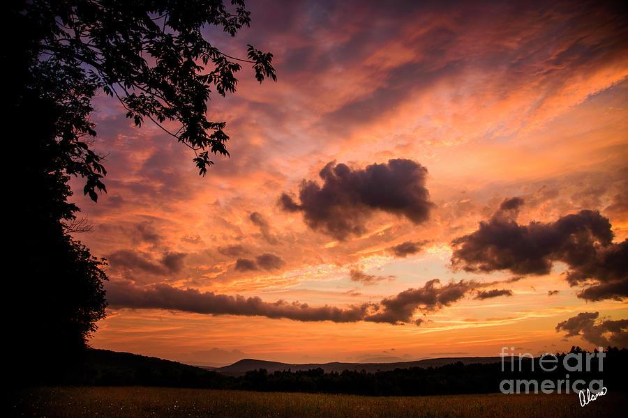 Sunset Beauty Photograph