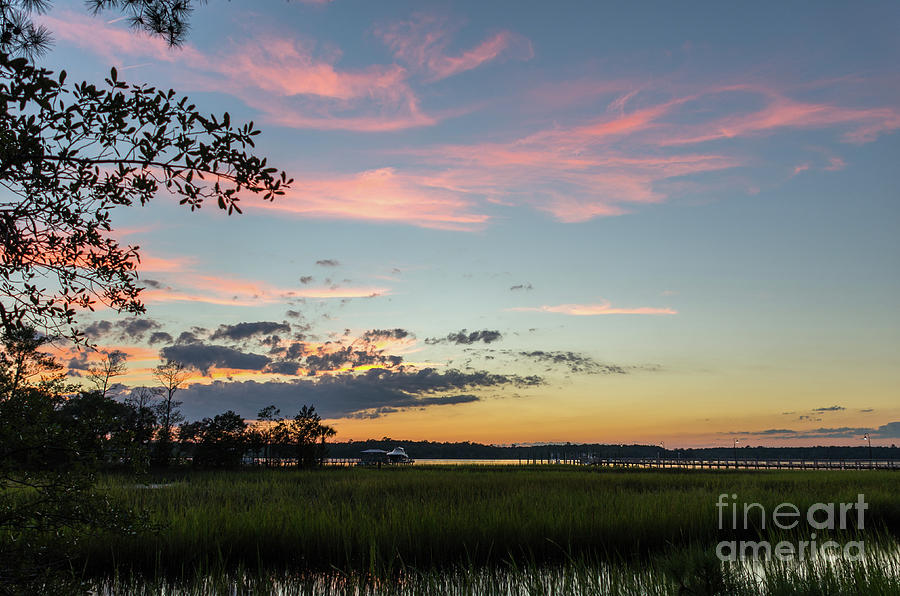 Sunset In The Reeds Photograph