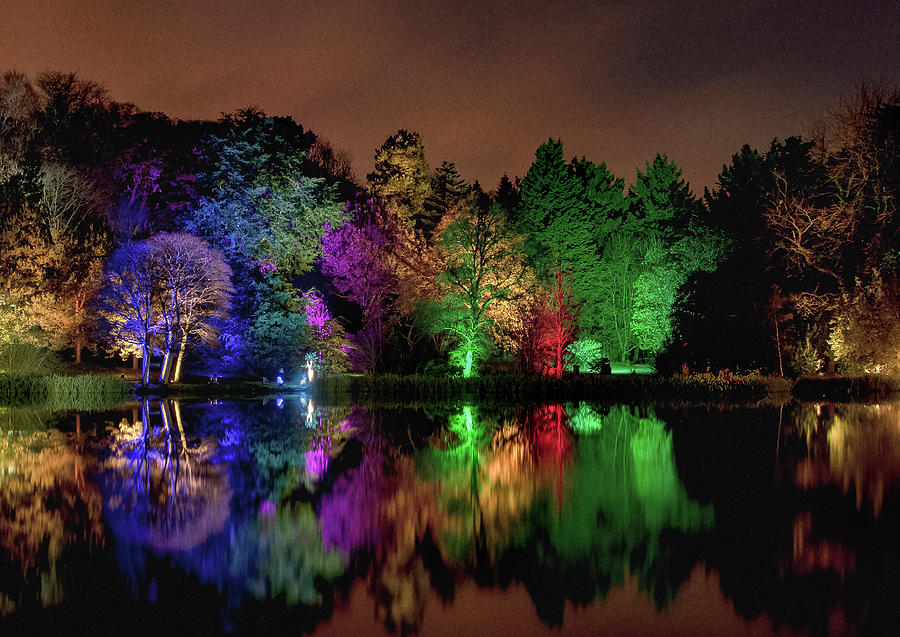 The Festival Of Lights Photograph