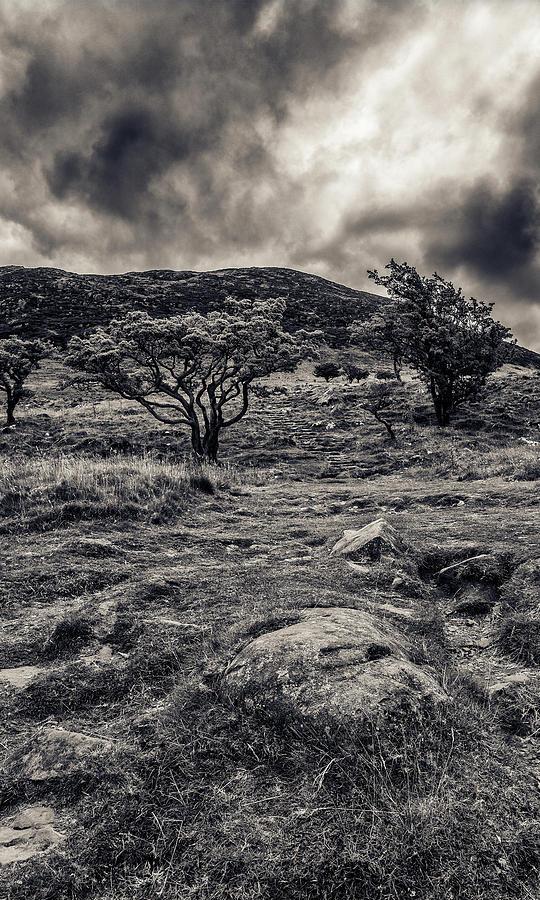 The Path Up Slemish Photograph