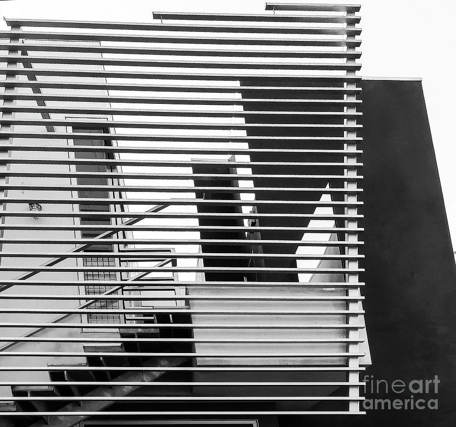 Urban Cage Photograph