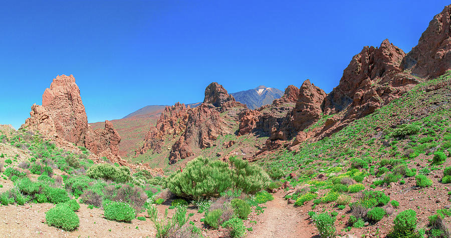 Volcanic Rocks In Front Of Mount Teide Photograph