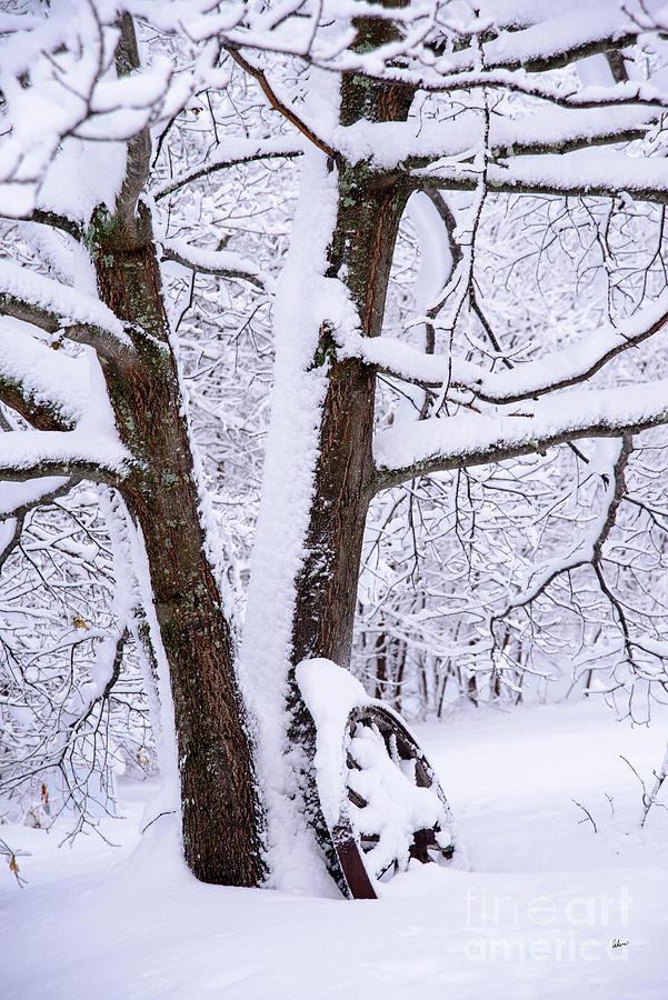 Wagon Wheel Snowy Scene Photograph