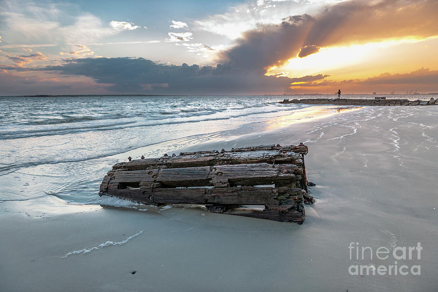 Washed Ahore - Sullivans Island South Carolina Photograph